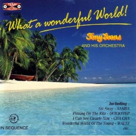 Picture of What A Wonderful World (CD)
